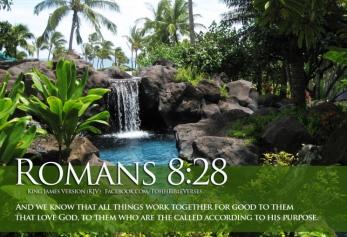 bible-verses-on-faith-romans-8-28-spring-hd-wallpaper